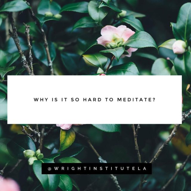 Ok but really why is it so hard to meditate?hellip